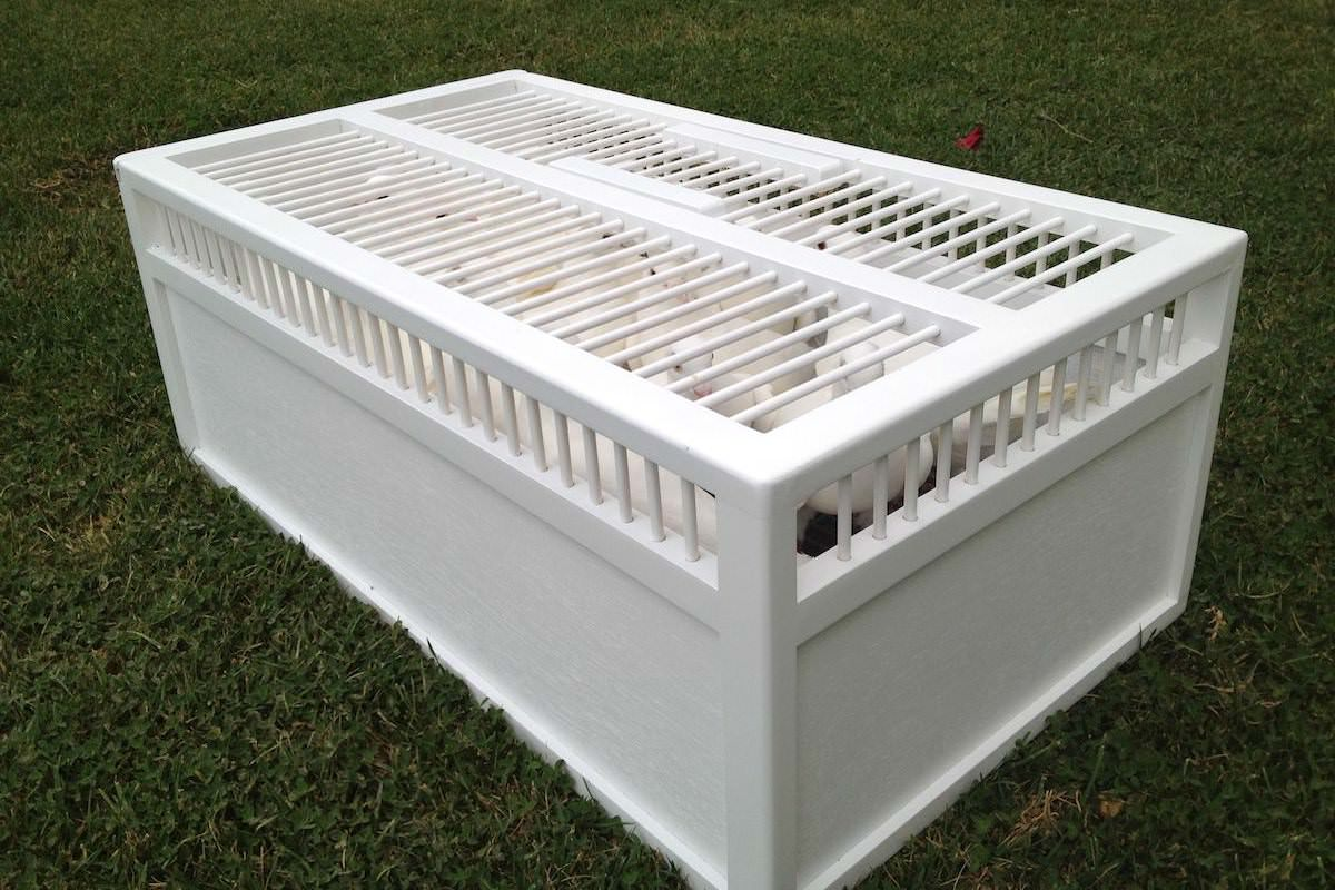 White Dove Release Has Several Packages Available For Weddings Funerals And Other Events As Well Smaller Doves Display In Cages To